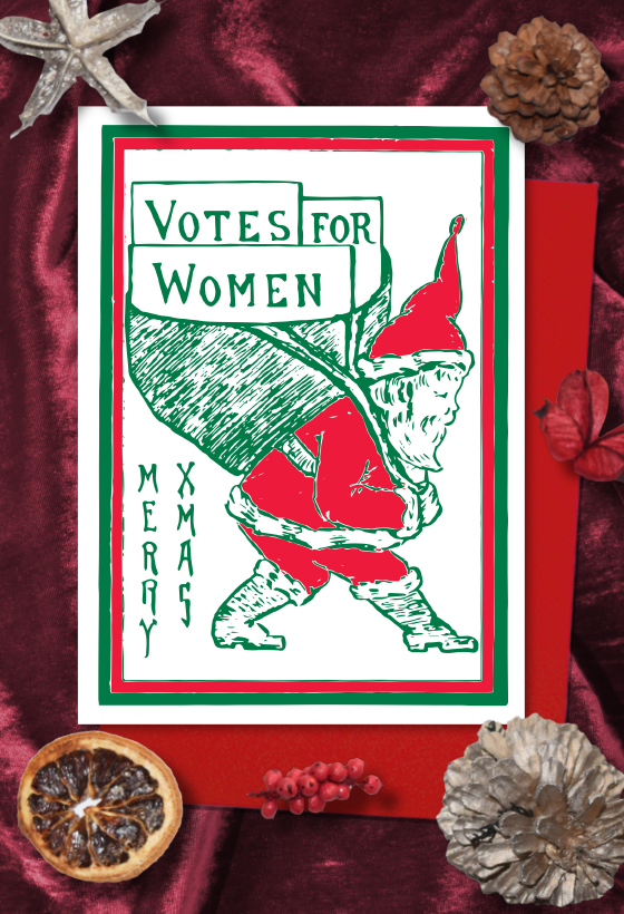Red Santa Votes for Women Christmas cards